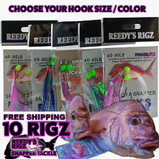 10 Flasher Rigs Circle Hooks Bait Fishing Pre Made Tackle Saltwater Fly