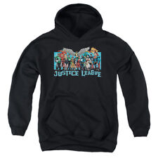 Justice League League Lineup Big Boys Youth Pullover Hoodie BLACK