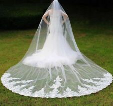 Cathedral Lace Edge Wedding Veil With Comb Long Bridal Appliqued Headdress Veils