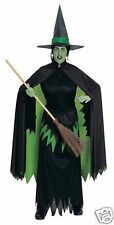 Wicked Witch Adult Wizard Of Oz Costume 15478