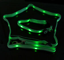 Lighted LED Leash Blue, Green, Red or Orange