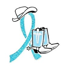 Light Blue Cancer Awareness Pin Glitter Ribbon Cowboy Western Boots Hat Causes