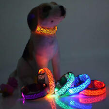 Night Safety Pets Dogs Collar Light Up Leopard Nylon LED Collars S M L New