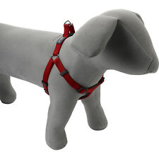 Petface Dog / Puppy Harness with Nylon Padding Comfort Durable Lightweight Red