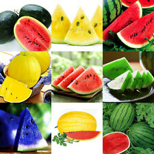 30Pcs Watermelon Seeds Heirloom  Delicious  Unusual Fruit Plant Organic Variety