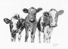 COW CHUMS Limited Edition art drawing prints  2 sizes A4/A3 & Card Available