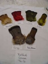 Ruffed Grouse Tail (YOU CHOOSE COLOR) NATURAL or DYED Fly Tying Feathers Crafts