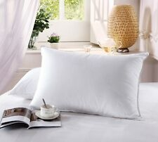 Standard/Queen Luxury 500 Thread Count Combed  Cotton White Goose Down Pillow