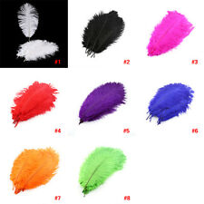 10pcs Wholesale Natural Male Ostrich Feathers 25-30cm/10-12inch Large Fluff DY