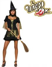 Adult's Sexy Wizard of Oz Wicked Witch Adult Costume