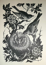 CHAFFINCHES ON HAWTHORN - Print after woodcut - AGNES MILLER PARKER - 1969.