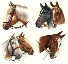 Horse Select-A-Size Waterslide Ceramic Decals Xx