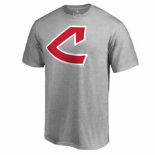 Fanatics Branded Cleveland Indians Ash Cooperstown Collection Huntington T-Shirt
