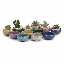 T4U 2.5 Inch Ceramic Ice Crack Zisha Serial Succulent Plant Pot Cactus Plant Pot
