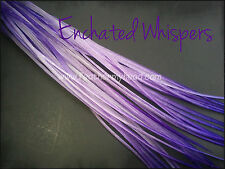 Whiting Farms Real  Feather Hair Extensions, Tie Dye Fades, Complete Kit Avail.