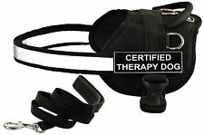 DT WORKS Working Harness & Padded Puppy Bundle w/ Patches: CERTIFIED THERAPY DOG
