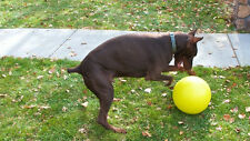 Varsity Ball Dog Toy for Large, Athletic, High-energy Dogs - Tennis