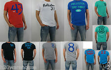 NWT HOLLISTER Men Muscle Fit Zuma Stone Steps Beach Tee T Shirt  By Abercrombie