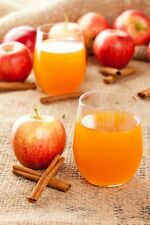 Mulled Cider Candle Fragrance / Soap Making Fragrance Oil 1-16 Ounce