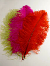 """OSTRICH PLUMES 18""""-23"""" FEATHERS Top Quality 26 Colors to Choose From Hats/Bridal"""
