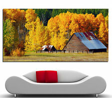 Canvas Wall Prints Fine Art Fall Trees Ranch Colorful Photo Print Decor x 2 3