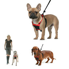 NEW SPORN Non Pull Padded Dog Harness - Small Medium Large - Stops Pulling COA