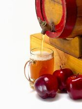 Apple Cider Candle / Soap Making Fragrance Oil 1-16 Ounce