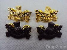 NEW British Military The Royal Scots Collar Dogs Badges Officer or Other Ranks
