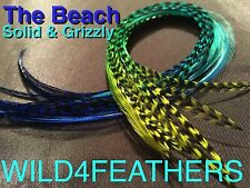 1pc Feather Hair Extension:MULTI-COLOURS:RAINBOW & MORE.Make your own PACK,AuSLr