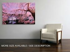 Canvas Print Picture Cherry Blossom Japan Garden / Gallery wrapped ready to hang