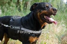 Rottweiler Harness UK, with Handle and Patches | Reflective Dog Harness No Pull