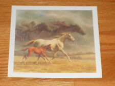 Fred Stone Horse Racing Print - small - The Eternal Legacy