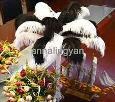 Beautiful! Wholesale 10-200pcs natural ostrich feathers 10-12inch / 25-30cm