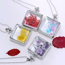 Dried Real Flowers Square Clear Glass Locket Pendant Necklace Chain Jewelry X9U6