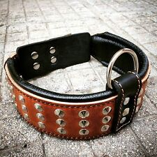 Real leather hand made dog collar, studded, 2.5 inch wide. Top Quality. M- XL