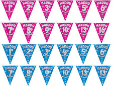 Birthday Party Bunting Banner 11 Flags Triangle Boys Girls Blue Pink 1st 16th 21