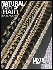 Natural Feather Hair Extensions NEW 5 XLONG Grizzly 1FREE Feathers Tools BeadKit