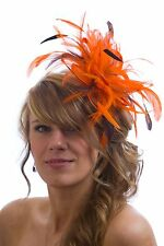 Orange Fascinator hat & Brown highlight/choose any colour satin/feathers