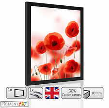 RED POPPY POPPIES FIELD FLOWERS - WOODEN PICTURES FRAMES CANVAS WALL ART PRINTS