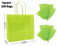 Lime Green Square Paper Party Gift Bags & Tissue Wrap ~ Boutique Shop Loot Bag