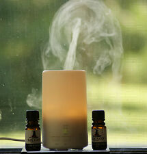 USB Essential Oil Diffuser - Aromatherapy Diffuser 70ml 1FREE 12ml Essential Oil