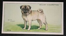 PUG        Original Vintage Illustrated Card  VGC