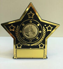 Academic and Multi Sports Budget Star Award, Free Centre, Free Engraving & P&P!
