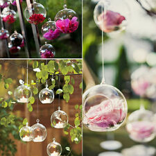 Hanging Glass Terrarium Flower Vase Bubble Candle Holders For Wedding Home Decor