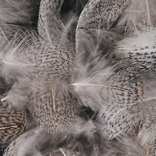 Hungarian Partridge Feathers 1 gram - (Fly Tying Feathers)