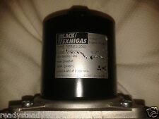 Black Teknigas 2009 Gas Solenoid Valve fast opening and flow 2inch 230v