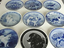 DOG PLATE TOVE SVENDSEN TOP QUALITY DIFFERENT CHOICES