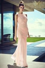Lipsy VIP Events Embroidered Bust Nude Pink Maxi Dress Sz UK 4 10 12 rrp £160