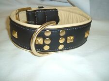 Black and Cream Studded leather dog collar with brass hardware