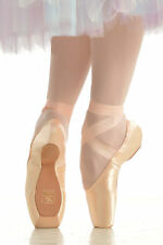 NWT Gaynor Minden Pointe Shoes